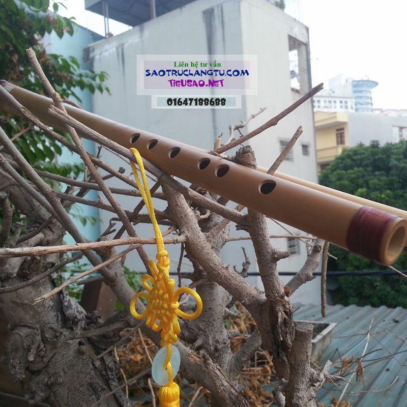 Sáo Rê cao (D5) trúc nứa - sáo tone Rê cao