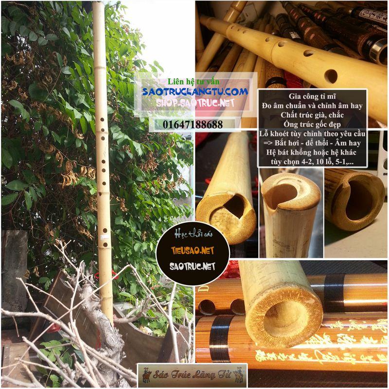 Tiêu trúc Việt loại tốt: tiêu bát khổng - tiêu 6 lỗ, 10 lỗ DT2